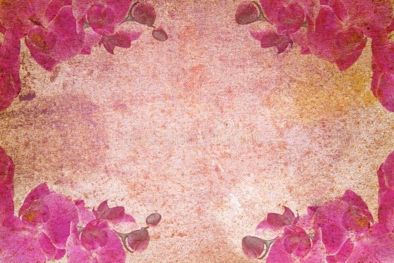 抽象动机老兰花纸张葡萄酒 皇族释放例证