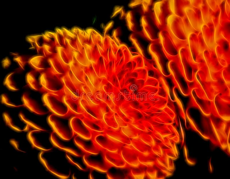 抽象发光的圈子建议花 图库摄影