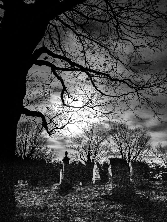 抽象坟园、树和月光 免版税库存图片