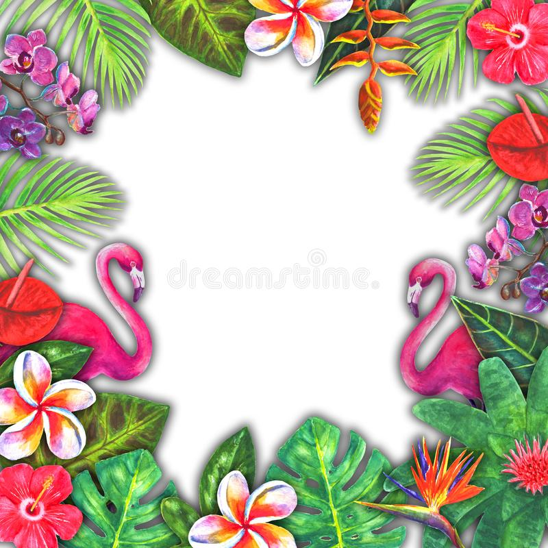 抽象夏天水彩热带天堂 手拉的五颜六色的纸热带植物,桃红色火鸟 皇族释放例证