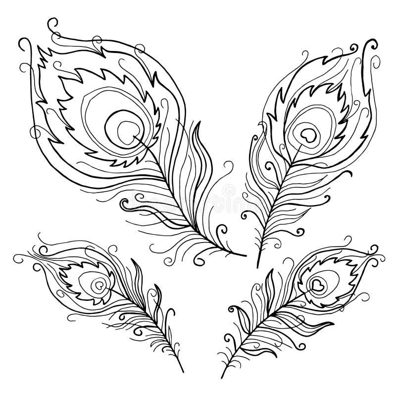 抽象孔雀的汇集为彩图用羽毛装饰 向量例证
