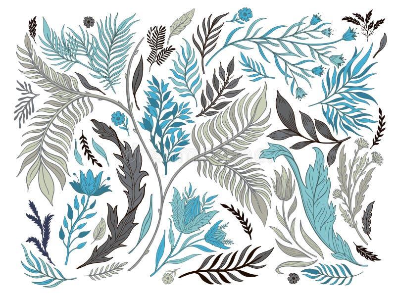 抽象手拉自然集合的收藏 种族装饰品,花卉图案,织物,植物的元素 减速火箭的样式葡萄酒 库存例证