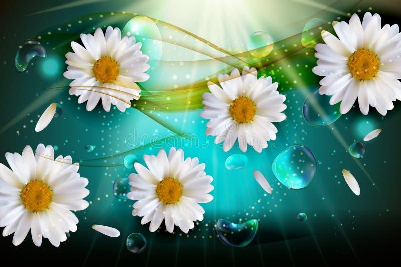 抽象春黄菊开花天然泉和夏天背景 向量例证