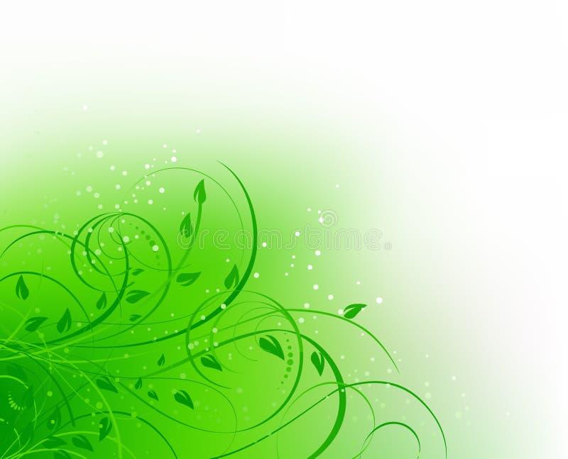 抽象曲线花卉绿色 库存例证
