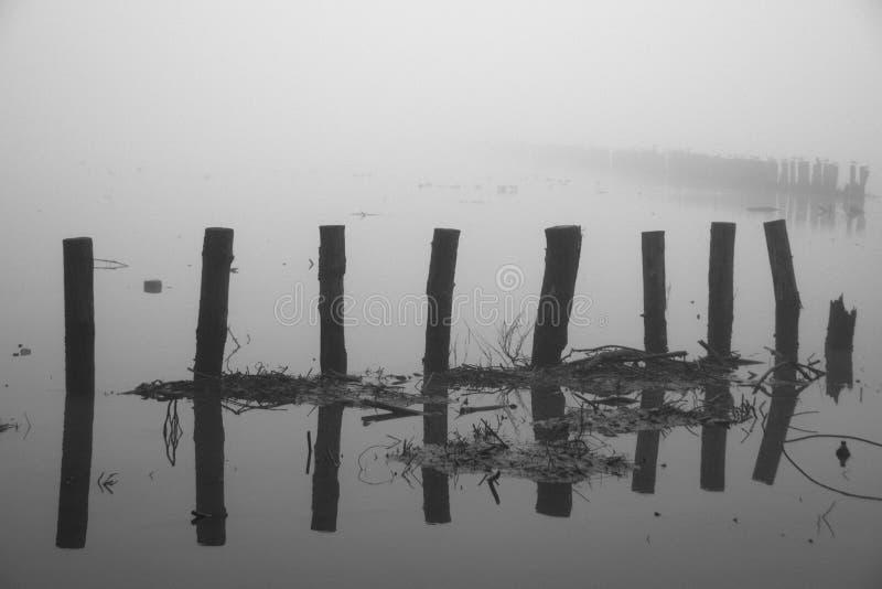 抽象有雾的横向冬天 免版税库存照片