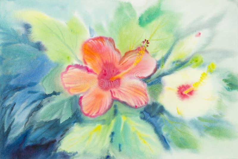 抽象木槿的水彩原始的绘画桃红色橙色颜色开花 皇族释放例证