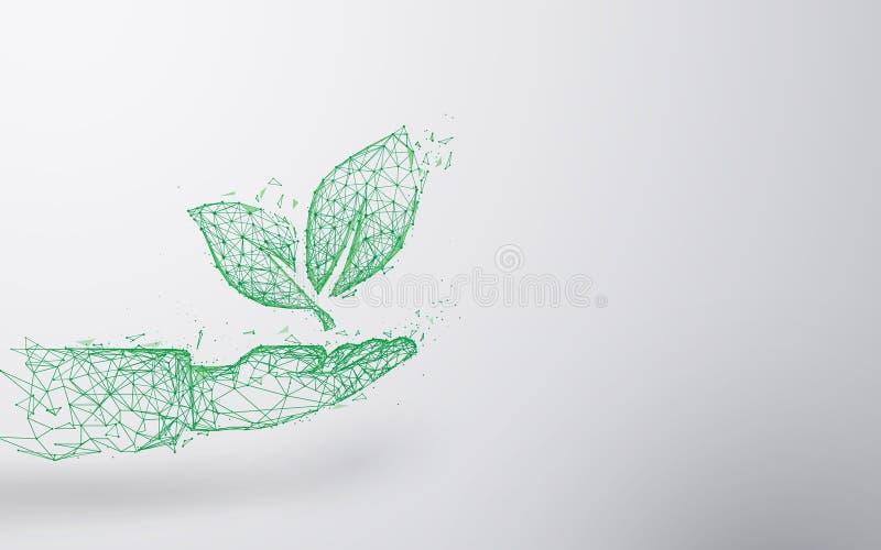 抽象植物在手边形式线和三角,点连接的网络背景 概念许多生态的图象我的投资组合 向量例证