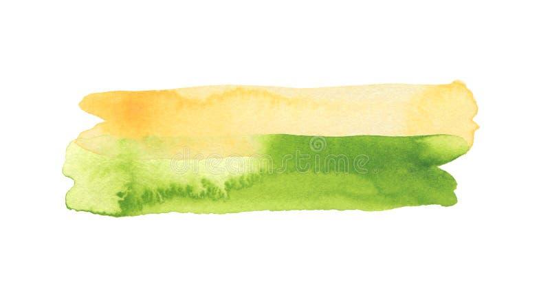 抽象水彩与丙烯酸线刷笔划污画 绿色设计元素 纹理纸 白色隔离 免版税库存图片