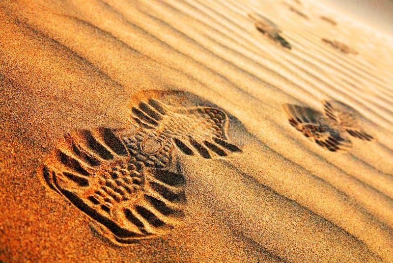 抽象沙漠模式 库存照片