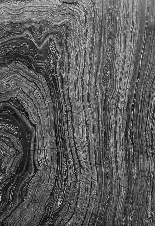 抽象灰色大理石作为树皮 免版税库存图片
