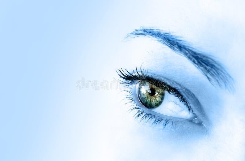 抽象眼睛 免版税图库摄影
