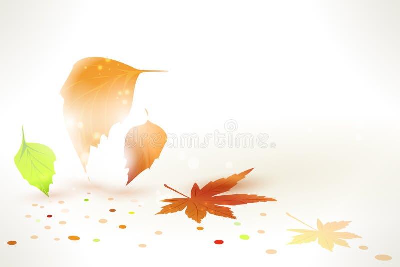 抽象秋叶向量背景 库存例证