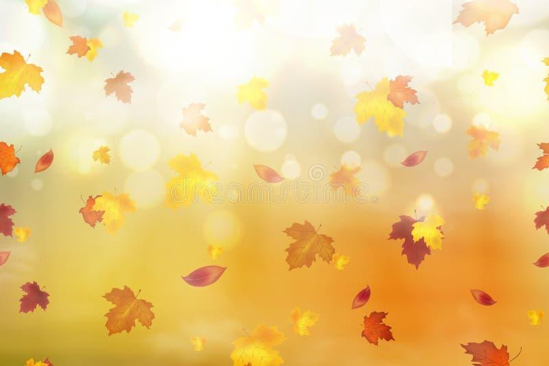 抽象秋天背景 秋天落红色,黄色,橙色,褐色在明亮的背景离开 秋季的传染媒介 皇族释放例证