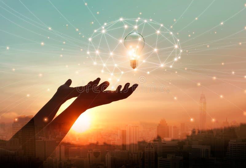 抽象科学 手藏品脑子数字网和电灯泡里面在网络连接在城市背景中 向量例证