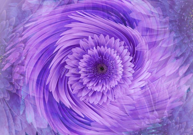 抽象紫色桃红色明亮的花卉背景 大丁草开花瓣特写镜头 2007个看板卡招呼的新年好 花卉拼贴画 库存图片