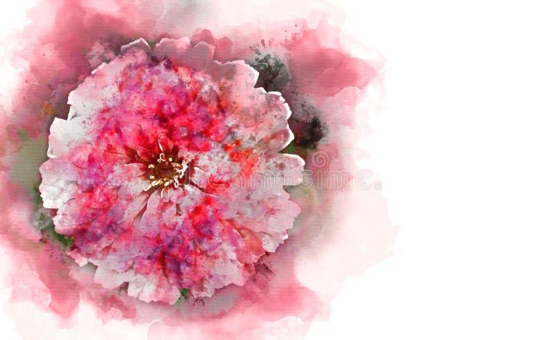 抽象红色形状五颜六色的花开花的水彩例证绘画 免版税库存图片