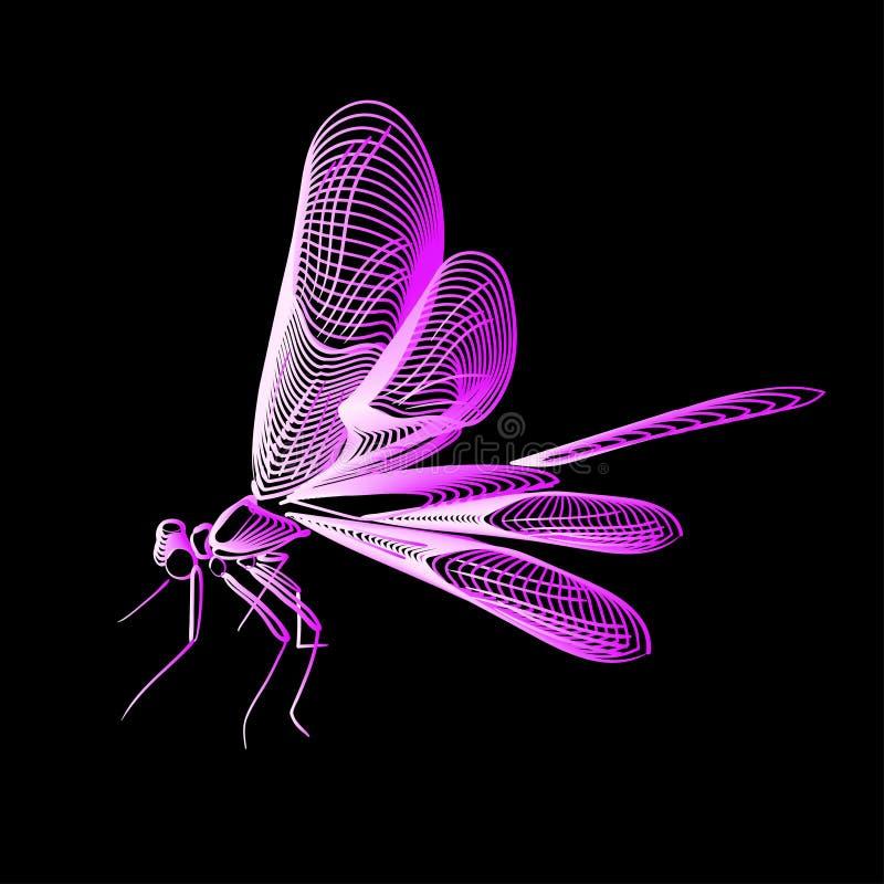 抽象线艺术蜻蜓,传染媒介例证隔绝了 皇族释放例证
