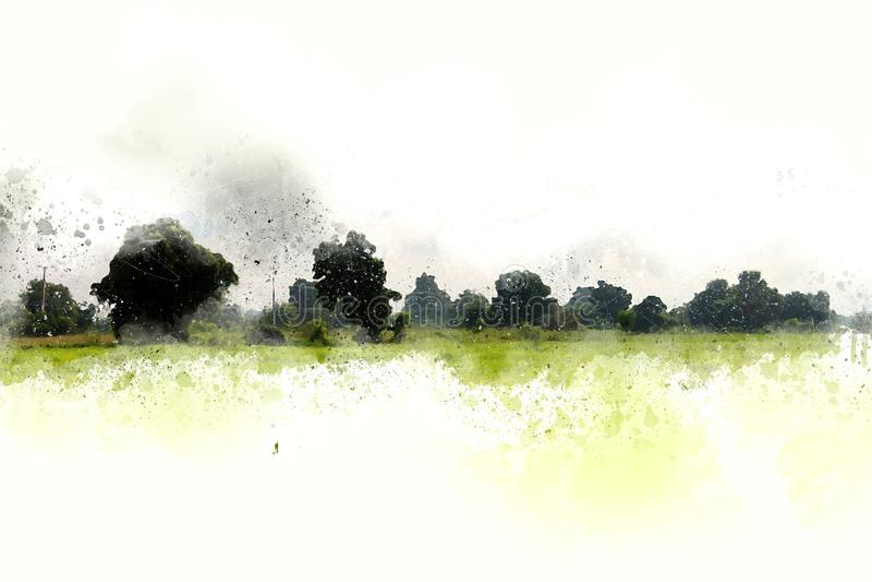 抽象绿色树和领域风景水彩 免版税库存照片