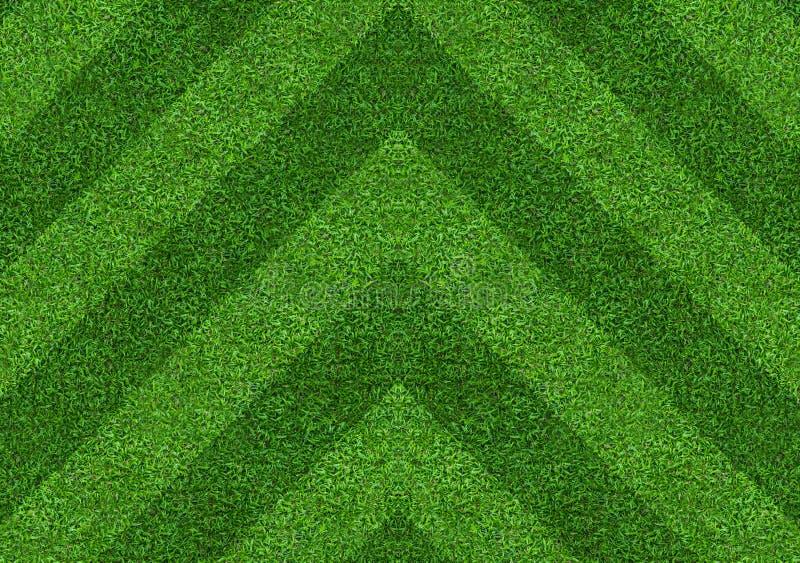 抽象绿草领域背景 绿色草坪样式和纹理 库存照片