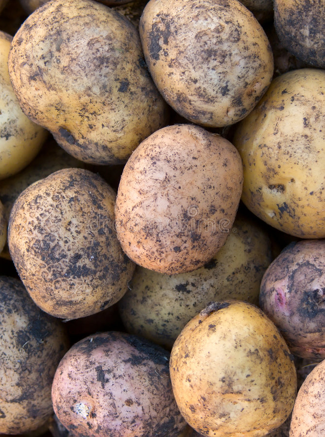 抽象背景土豆肿胀 免版税库存照片