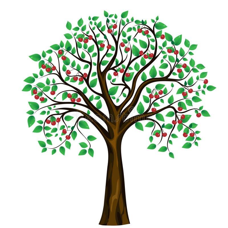 抽象背景樱桃树向量白色 库存例证