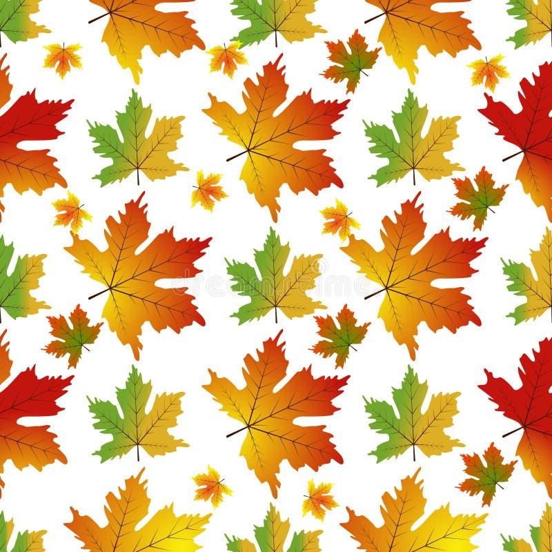 抽象背景留给槭树模式无缝 库存例证