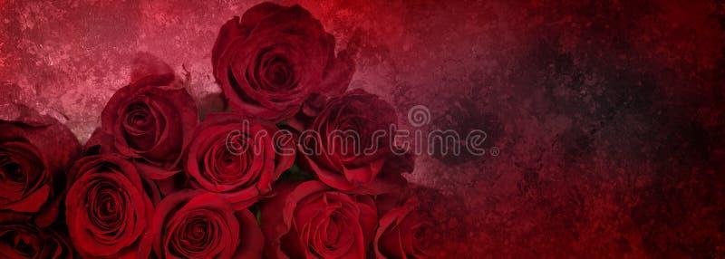 抽象背景红色玫瑰 皇族释放例证