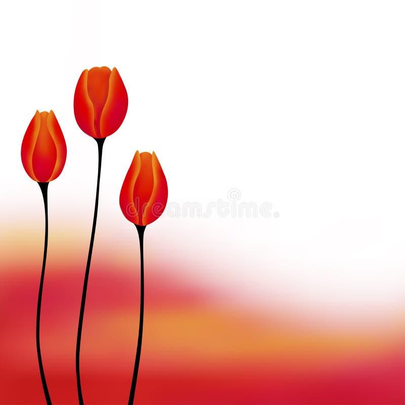 抽象背景红色黄色郁金香花例证 向量例证