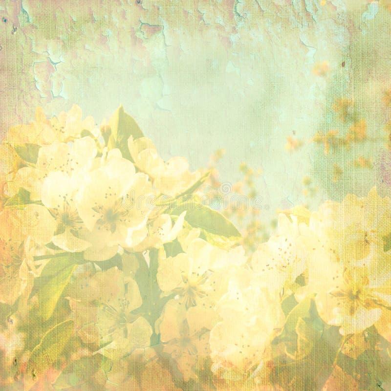 抽象背景茉莉花春天 向量例证