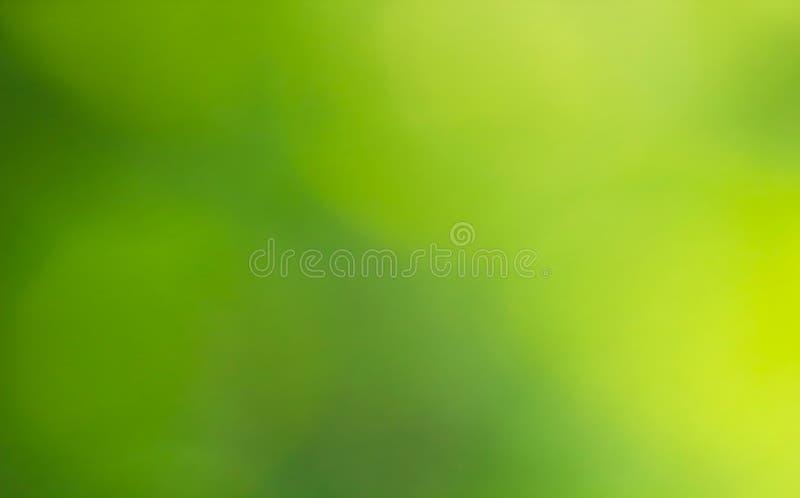 抽象背景被弄脏的绿色 模糊的春天草甸,传染媒介 皇族释放例证