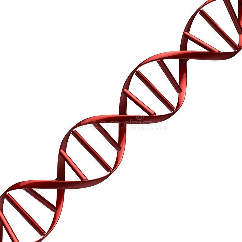 抽象脱氧核糖核酸红色 库存例证