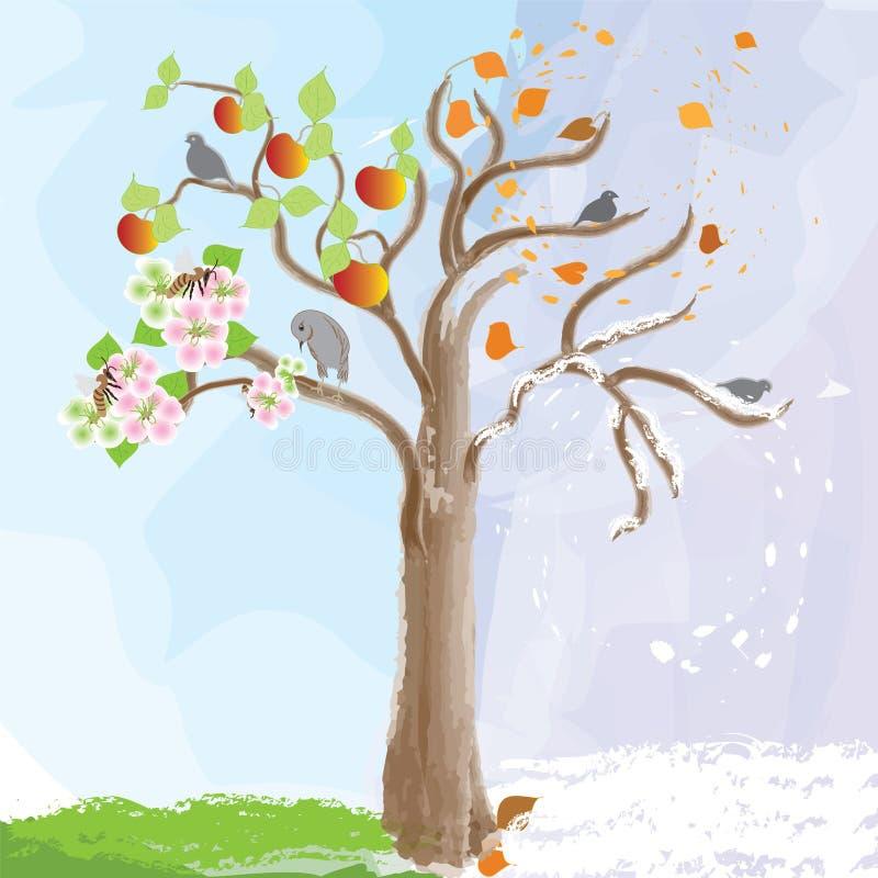 抽象苹果作为更改季节性符号结构树 向量例证
