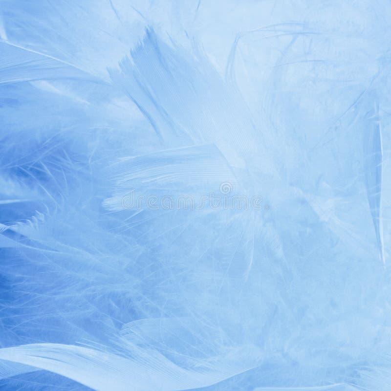 抽象蓝色口气羽毛背景 蓬松羽毛时尚设计葡萄酒漂泊样式柔和的淡色彩纹理 向量例证