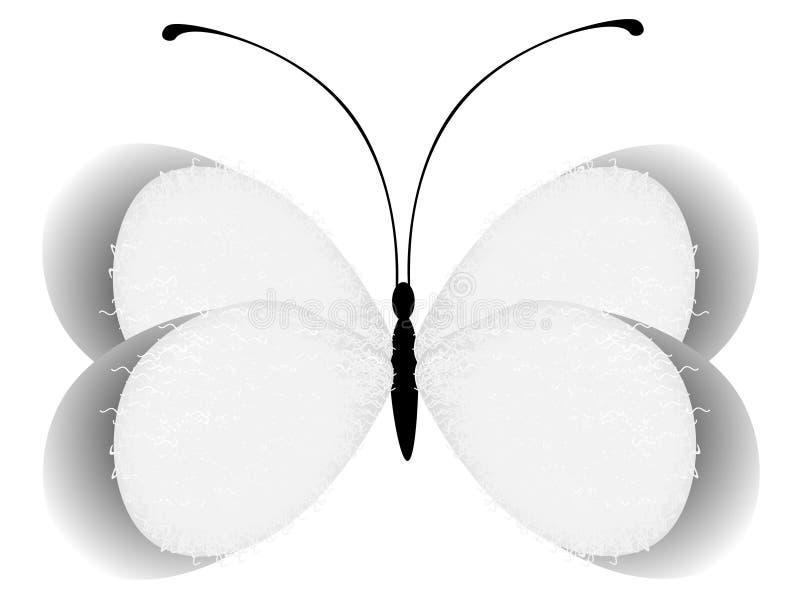 抽象蝴蝶,设计的元素,隔绝在白色背景 皇族释放例证