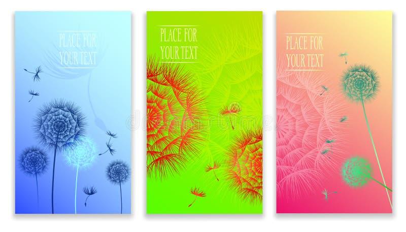 抽象集合夏天蒲公英花背景艺术设计网倒栽跳水模板 向量例证