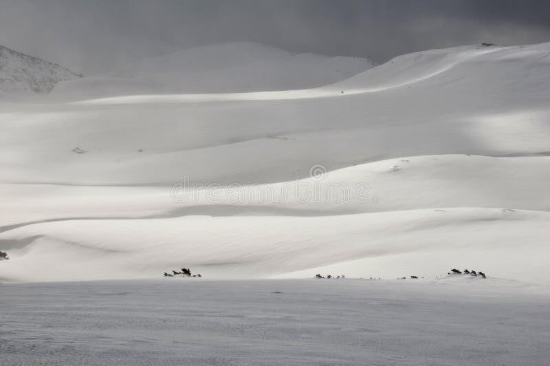 抽象雪 库存照片