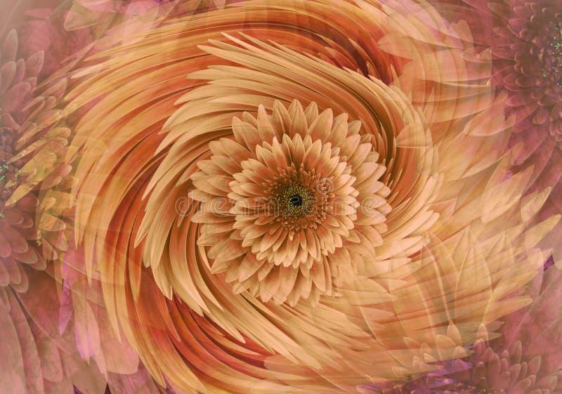 抽象黄色红色橙色明亮的花卉背景 大丁草开花瓣特写镜头 2007个看板卡招呼的新年好 花卉拼贴画 免版税图库摄影