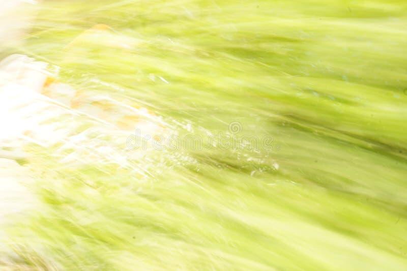 抽象以绿色 库存图片