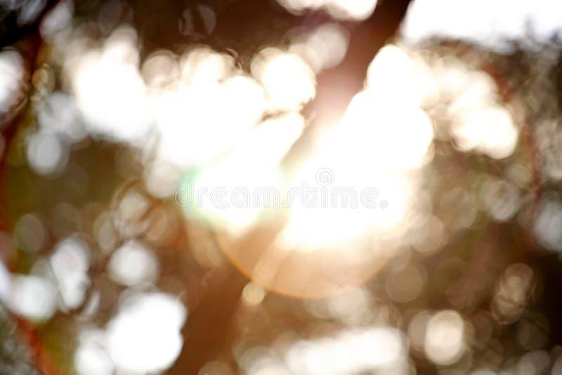 抽象bokeh和透镜火光 库存照片