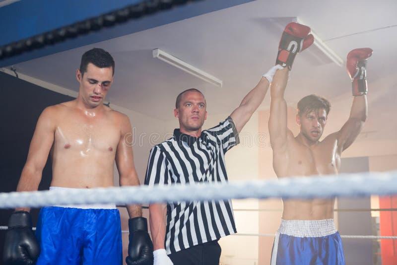 担任仲裁握赢取的男性拳击手的手由运动员 库存图片