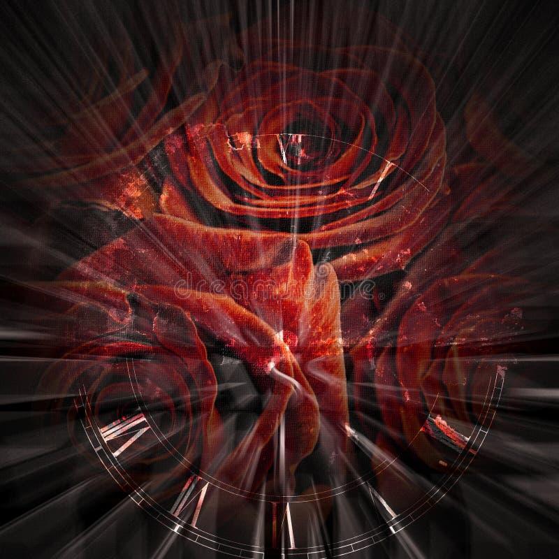 拉丁玫瑰 库存例证