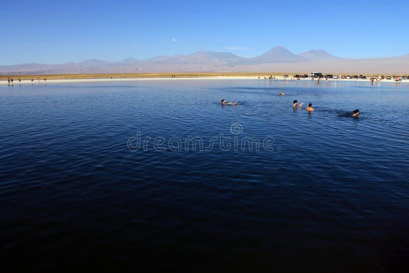 拉古纳Cejar,智利 免版税图库摄影