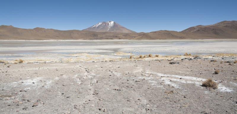 拉古纳Chiarkota -椅子KKota 4700 mt是玻利维亚的altiplano的西南的一个浅盐湖 库存图片