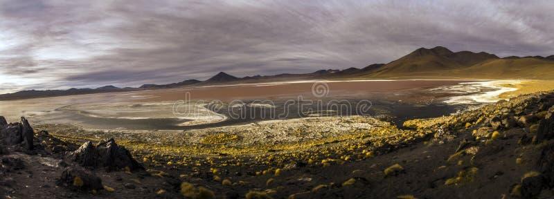 拉古纳Colorada在山脉de Lipez,玻利维亚 免版税图库摄影