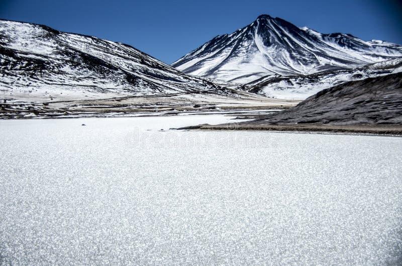 拉古纳Tuyaito -阿塔卡马沙漠-智利 免版税库存图片