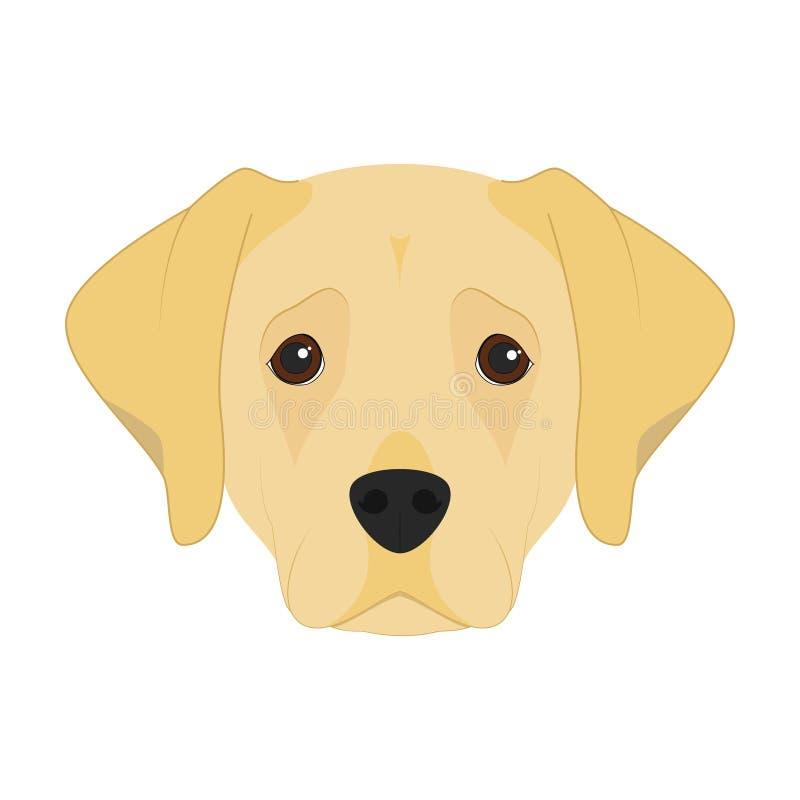 拉布拉多猎犬狗传染媒介例证 向量例证