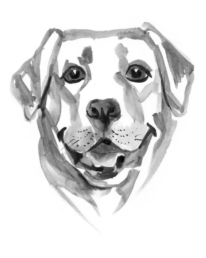 画拉布拉多猎犬的色的手 额嘴装饰飞行例证图象其纸部分燕子水彩 向量例证
