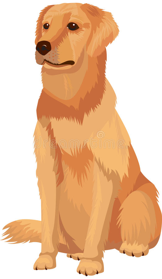 拉布拉多猎犬 皇族释放例证