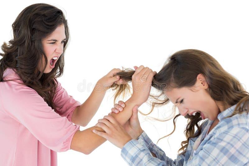 拉扯在战斗的恼怒的少妇女性头发 免版税库存图片