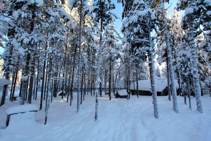 拉普兰(罗瓦涅米),芬兰 免版税库存照片
